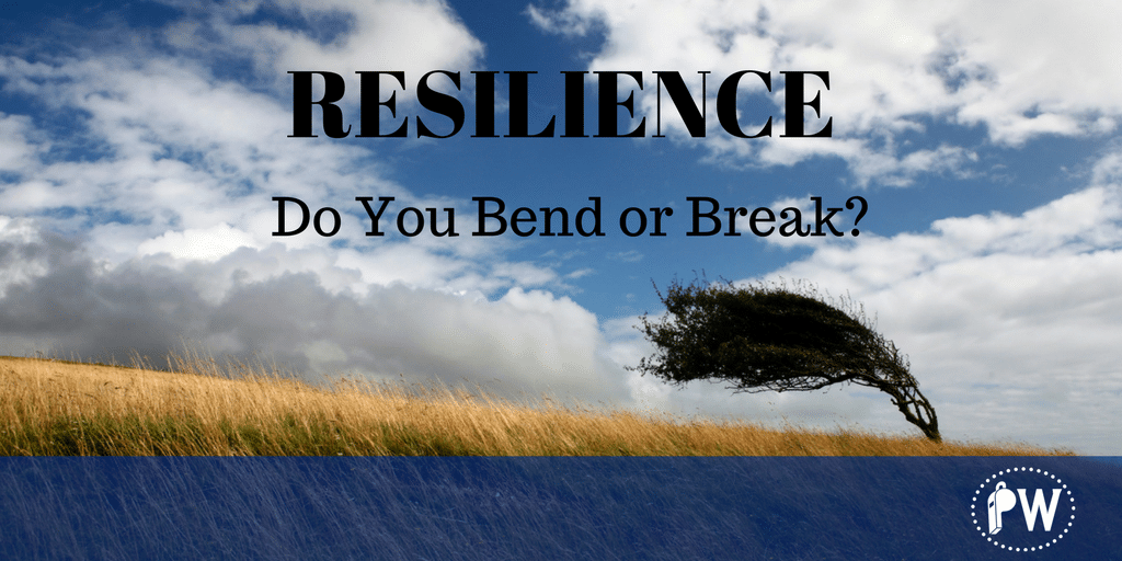 Resilience in the Family Owned Business